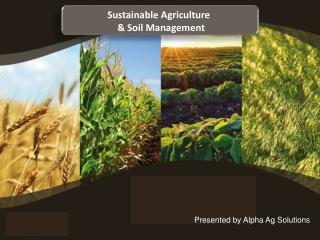 Sustainable Agriculture   & Soil Management