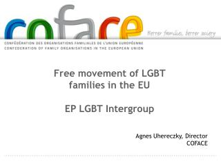 Free movement of LGBT families in the  EU  EP LGBT Intergroup