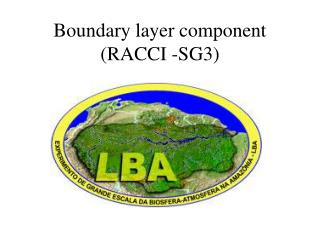 Boundary layer component (RACCI -SG3)