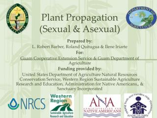 Plant Propagation (Sexual & Asexual)