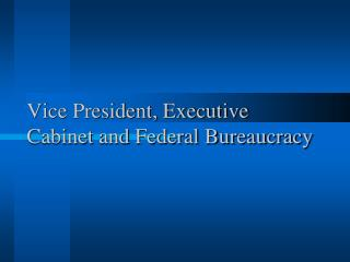 Vice President, Executive Cabinet and Federal Bureaucracy