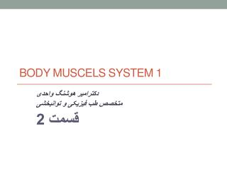 body  muscels  system 1