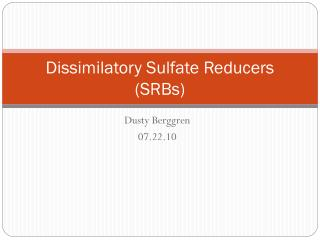 Dissimilatory Sulfate Reducers (SRBs)