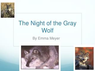 The Night of the Gray Wolf