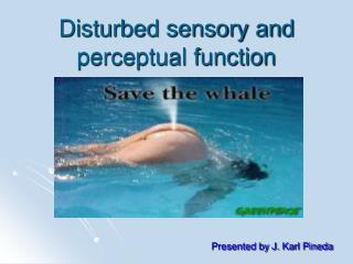 Disturbed sensory and perceptual function