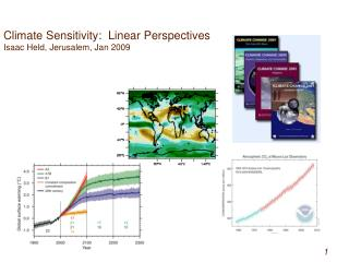 Climate Sensitivity:  Linear Perspectives             Isaac Held, Jerusalem, Jan 2009