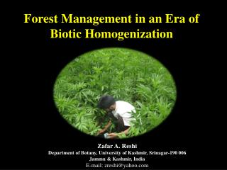 Forest Management in an Era of Biotic Homogenization