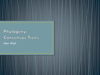Phylogeny: Consensus Trees