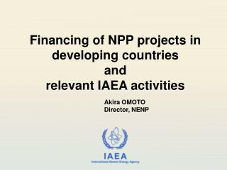 Financing of NPP projects in developing countries and  relevant IAEA activities