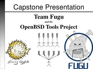 Team Fugu and the OpenBSD Tools Project