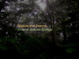 Plagues and Swarms Invasive Species Ecology