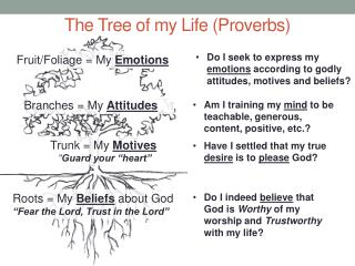 The Tree of my Life (Proverbs)