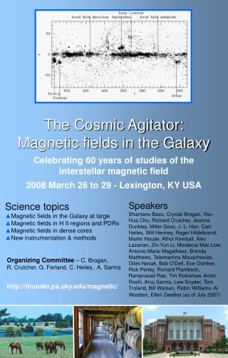 The Cosmic Agitator: Magnetic fields in the Galaxy