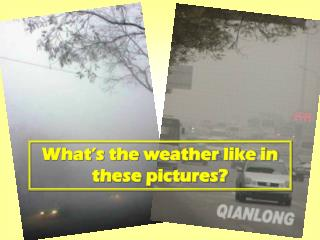 What's the weather like in these pictures?