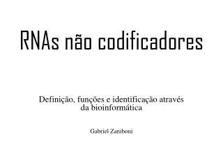 RNAs não codificadores