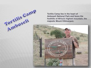 Family Vacation to Tortilis Camp Amboseli