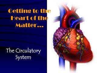 Getting to the Heart of the Matter…