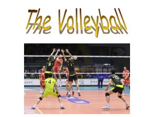 The Volleyball