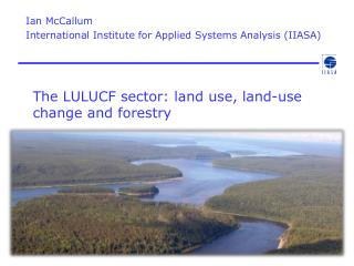 The LULUCF sector:  land use, land-use change and forestry