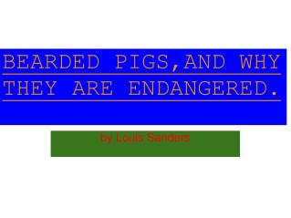 BEARDED PIGS,AND WHY THEY ARE ENDANGERED.