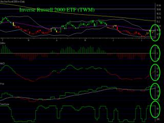 Inverse Russell 2000 ETF (TWM)