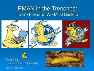 RMAN in the Trenches: To Go Forward, We Must Backup