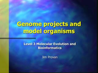 Genome projects and model organisms