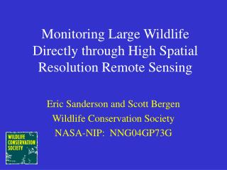 Monitoring Large Wildlife Directly through High Spatial Resolution Remote Sensing