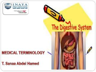 MEDICAL TERMINOLOGY  T.  Sanaa  Abdel  Hamed