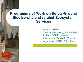 Programme of Work on Below-Ground Biodiversity and related Ecosystem Services