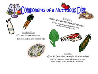Components of a Nutritious Diet