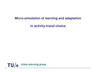 Micro-simulation of learning and adaptation in activity-travel choice
