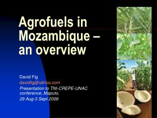 Agrofuels in Mozambique –  an overview