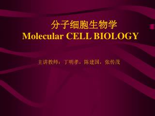 分子细胞生物学 Molecular CELL BIOLOGY
