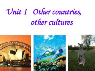 Unit 1   Other countries,               other cultures