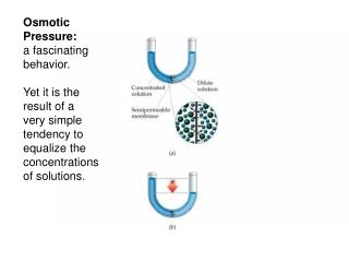 Osmotic Pressure: a fascinating behavior.  Yet it is the result of a very simple tendency to