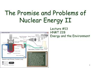 The Promise and Problems of Nuclear Energy II