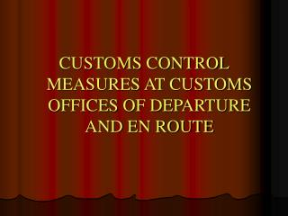CUSTOMS CONTROL MEASURES AT CUSTOMS OFFICES OF DEPARTURE AND EN ROUTE