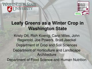 Leafy Greens as a Winter Crop in Washington State