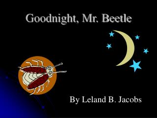 Goodnight, Mr. Beetle
