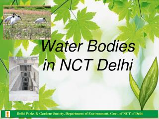Water Bodies in NCT Delhi
