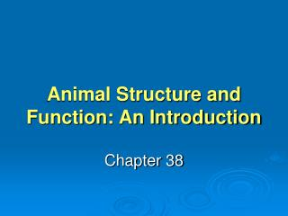 Animal Structure and Function: An Introduction