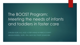 The BOOST Program: Meeting the needs of infants and toddlers in foster care