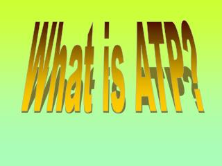 What is ATP?