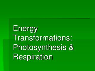 Energy Transformations: Photosynthesis & Respiration