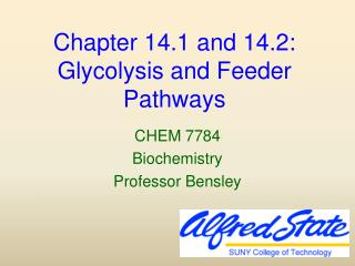 Chapter 14.1 and 14.2:  Glycolysis and Feeder Pathways