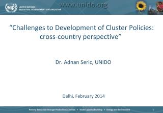 """Challenges to Development of Cluster Policies: cross-country perspective"""