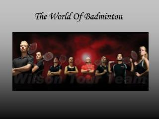 The World Of Badminton