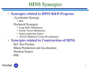 HINS Synergies