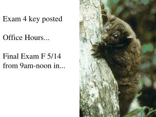 Exam 4 key posted Office Hours... Final Exam F 5/14 from 9am-noon in...